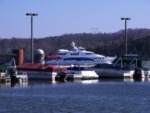Marina on Tellico Reservoir by Roger Simpson