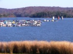 Marina on Tellico Reservoir