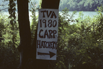 "Sign Reading ""TVA 1980 Carp Hatchery,"" near the Little Tennessee River"