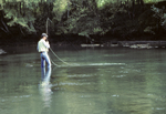 Man Fishing, Little Tennessee River